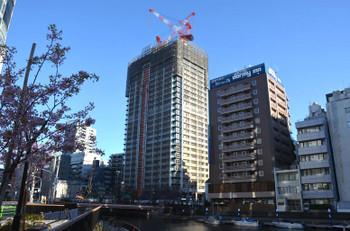 Tokyoshinkawa170411