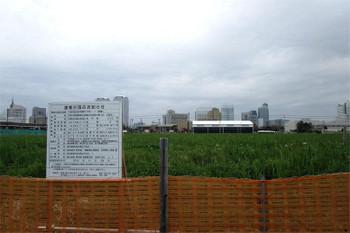Chibamakuhari170417