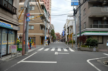 Tokyopalm170519