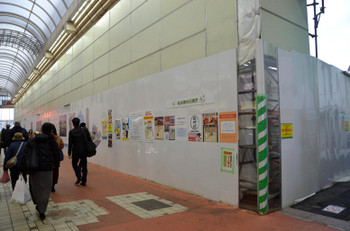 Tokyopalm170520