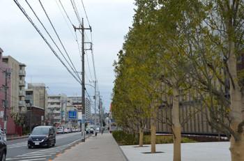 Yokohamaapple170818