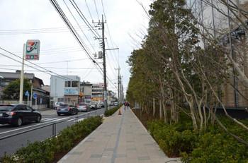 Yokohamaapple170819
