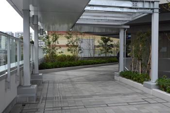 Kawasakikashimada170958