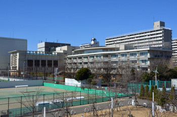 Tokyotoyomi170917