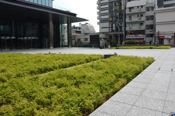 Tokyoavex171118
