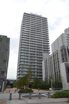 Yokohamamm2178_2