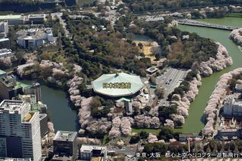 Tokyobudokan180411