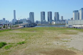 Tokyotoyosu180615
