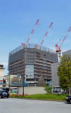 Tokyokoyama180712