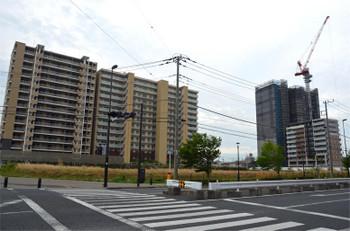 Chibakashiwanoha180812