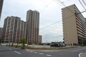 Chibakashiwanoha180813