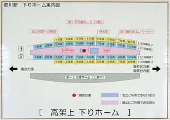 Yokohamahoshikawa180814