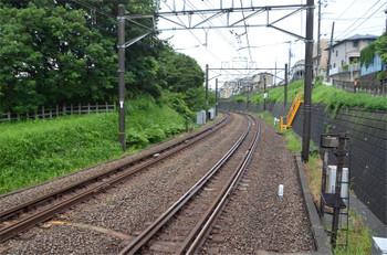 Yokohamatsurugamine180916