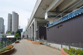 Chibakashiwanoha180917