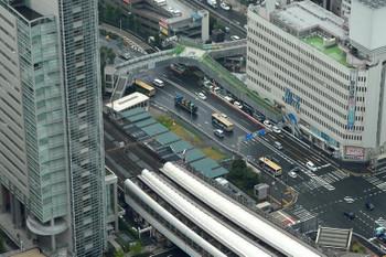Yokohamasakuragicho181015