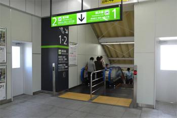 Yokohamakikuna181023