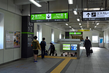 Yokohamakikuna181024
