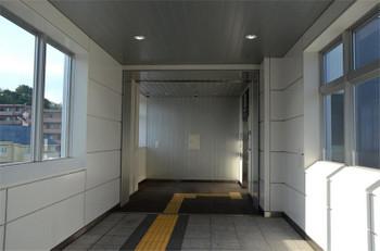 Yokohamakikuna181031