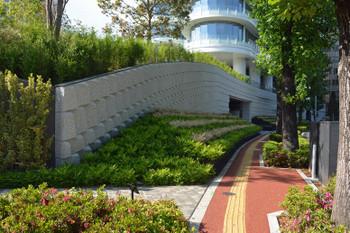 Tokyoaoyama181017
