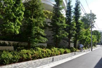Tokyoaoyama181025