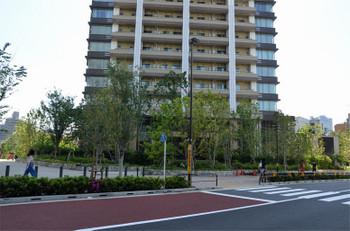 Tokyomeguro181178