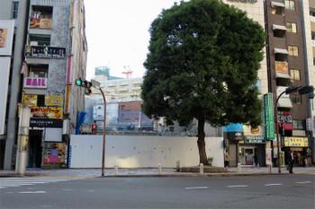 Tokyodonki181211