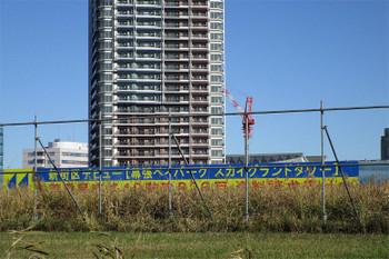 Chibamakuhari181232