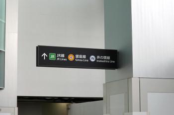 Tokyoshibuya190220