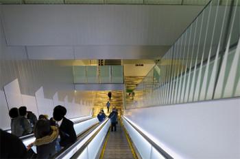 Tokyoshibuya190222