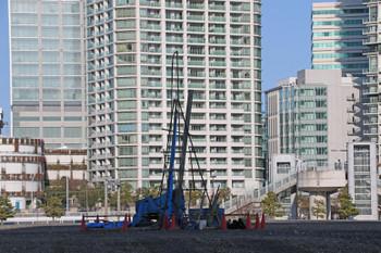 Yokohamanamm21190260