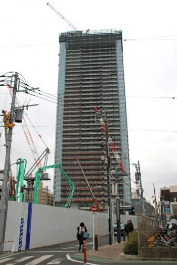 Tokyokoyama190415