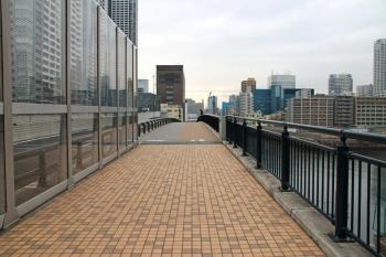 Tokyoreimei190517