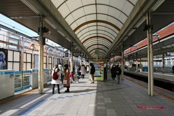 Yokohamasakuragicho190418