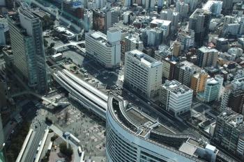 Yokohamasakuragicho190511