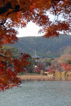 Kyoto20074