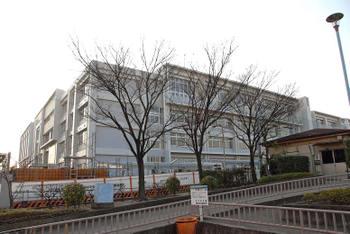 Osakanishikujo080315