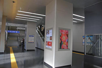 Jrhigashi31