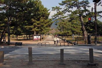 Nara54