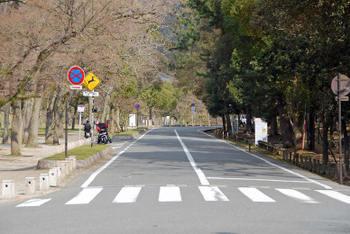 Nara55