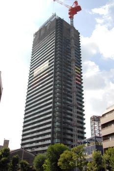 Osakasagisu08091