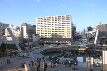 Osakaocat08121