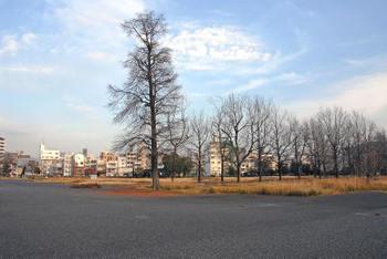 Hiroshimagarden09014