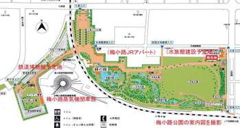 Kyotoume09081