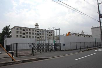 Kyotoorix10075