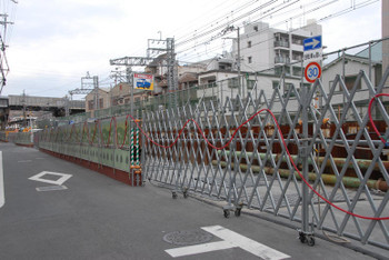 Osakashimo13059