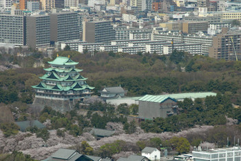 Nagoyacastle13082
