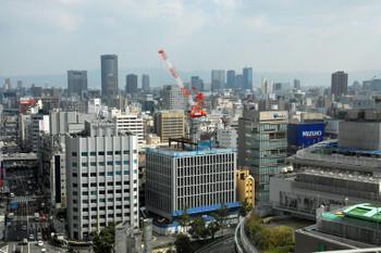 Osakaseiwa13111