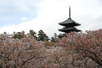Kyotounesco1407107
