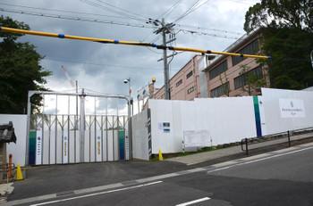 Kyotofourseasons14087