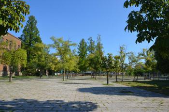 Hiroshima_university14097